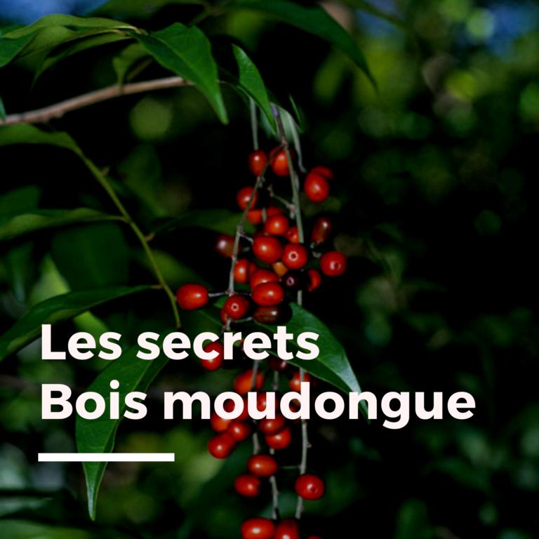 Les secrets bois moudongue