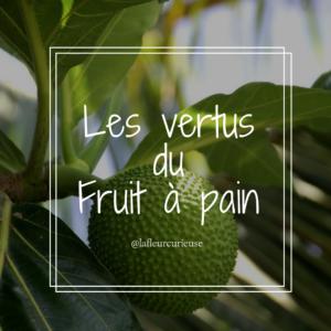 Les vertus du Fruit à pain