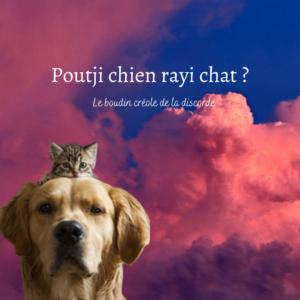 Copie de Poutji chien rayi chat