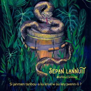 Copie de Sépan lannuit