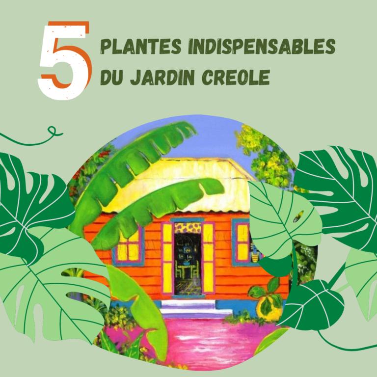 Les 5 plantes indispensables