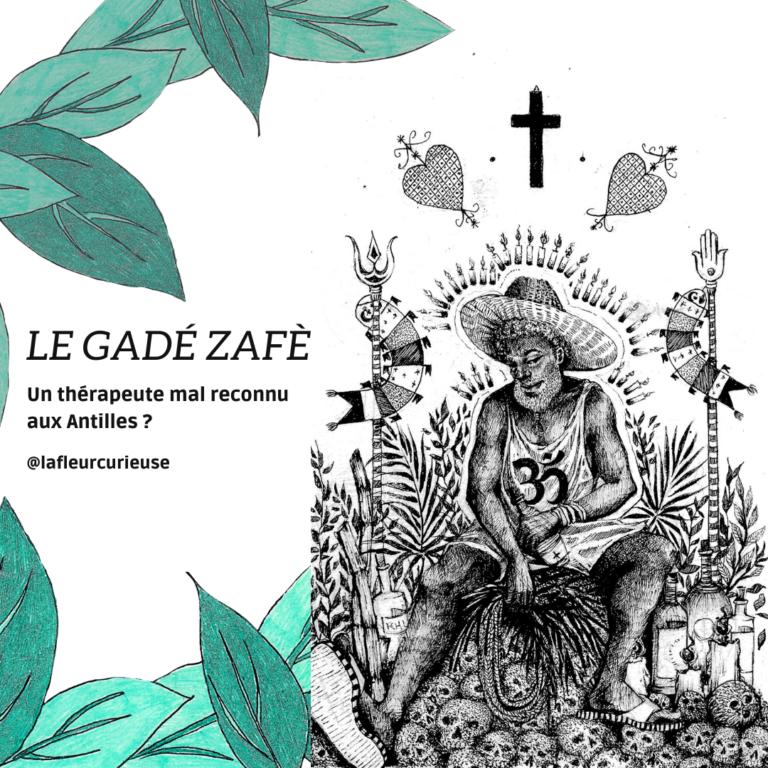 Le Gadézafè